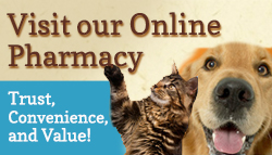 Visit-Pharmacy-Banner-Natural