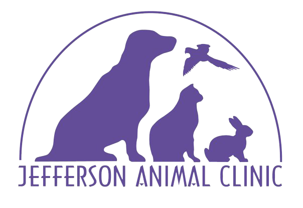 Jefferson Animal Clinic